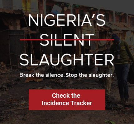 SWN-NigeriasSilentSlaughter_Graphics-01