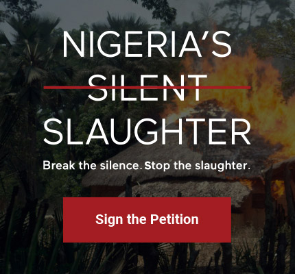 SWN-NigeriasSilentSlaughter_Graphics-02