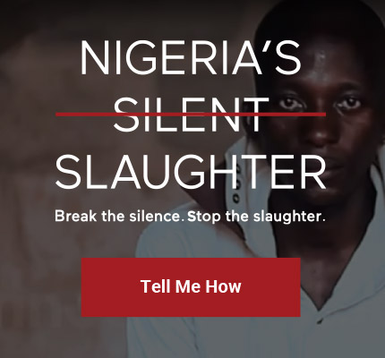 SWN-NigeriasSilentSlaughter_Graphics-03